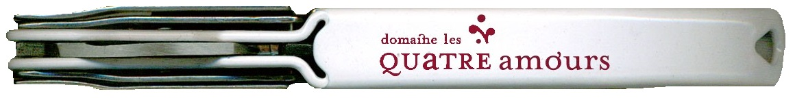 innovation blanc logo